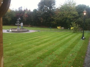 Commercial turfing - County Hotel